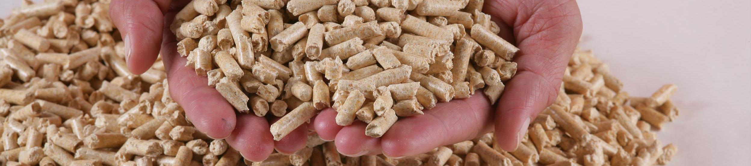 qué son los pellets