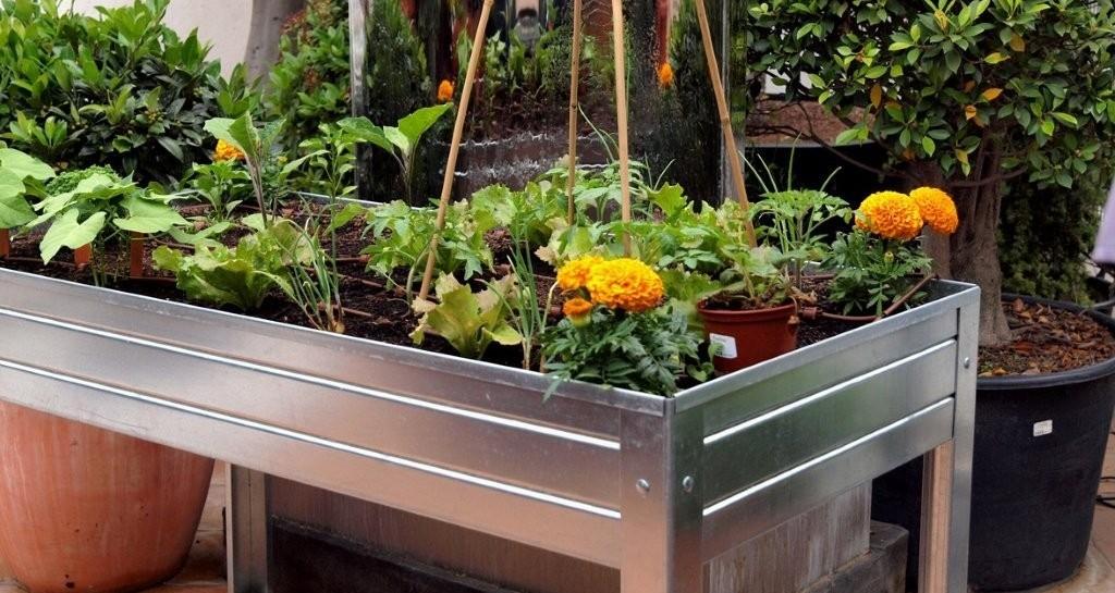 Huerto urbano como empezar for Mesas de cultivo urbano