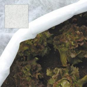 Malla protectora para plantas (2,4x10 metros)